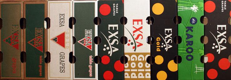 EXSA-logo-development