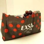 Exsa-polycote-bag