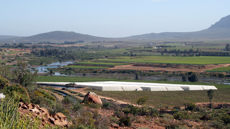 Olifants River Region